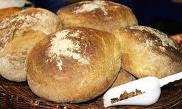 面包和护痉套 库存图片