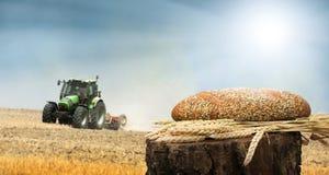 面包和麦子谷物庄稼。在背景的Traktor 库存照片