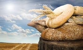 面包和麦子谷物庄稼 免版税库存图片