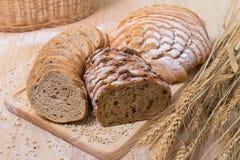面包品种  免版税库存图片