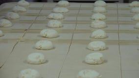 面包店和甜小圆面包 股票视频