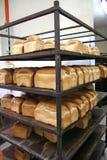 面包店面包 库存图片