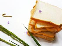 面包早餐在早晨 免版税库存照片