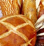 面包有壳的法语 免版税库存图片