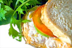 面包有壳的mayonaise金枪鱼 免版税库存图片