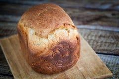 面包植入全部向日葵的麦子 库存图片