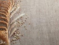 面包片和玉米穗在麻袋布的 库存照片