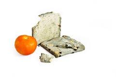 面包真菌用新鲜的蕃茄 免版税库存图片