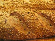 面包种子 图库摄影