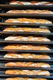 面包被烘烤 库存照片