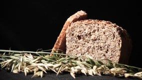 面包褐色 库存图片