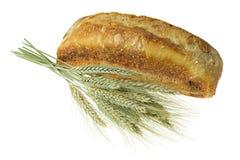 面包谷物 库存照片