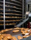 面包面包店 库存图片