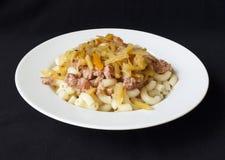 面团油煎的肉菜 库存图片