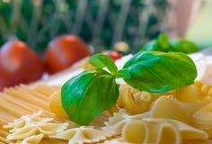 面团,蕃茄,蓬蒿,巴马干酪,刀子 免版税图库摄影