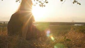 面孔走在领域和敬佩日落,妇女佩带的太阳镜的外形少女看太阳,概念hikin 股票录像