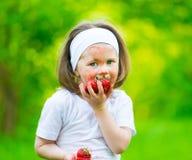 面孔,草莓面具,乐趣,关闭 库存图片