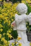 面对一棵大沼地黄色水仙黄水仙小孩的雕象有天使翼的开花 免版税库存图片