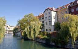 面对卢布尔雅那河的大厦 免版税库存照片