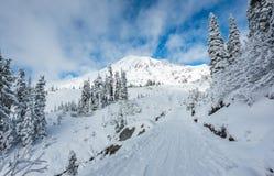 面对在道路盖子的人立场山有雪的 免版税图库摄影