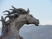 面对山的马头 免版税库存图片