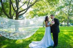 面对的愉快的新婚佳偶夫妇拿着手、新娘和新郎与吹在风的面纱 免版税库存照片