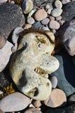 面对石头 免版税图库摄影