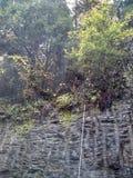 面对老路的峭壁美丽的山 免版税库存照片