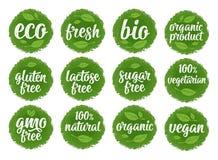 面筋,乳糖,糖,自由的Gmo,生物,eco,新鲜,素食主义者,与叶子,立方体,下落的素食书法字法 传染媒介白色 库存例证
