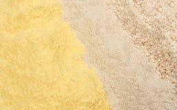 面粉、玉米、荞麦和全麦的不同的类型 免版税库存照片