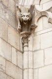 面貌古怪的人雕象,巴黎圣母院 库存照片