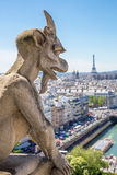 面貌古怪的人巴黎 库存照片