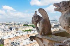 巴黎面貌古怪的人 免版税库存照片