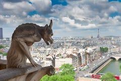 巴黎面貌古怪的人 免版税图库摄影