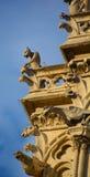 巴黎面貌古怪的人Notre Dame大教堂  免版税库存图片