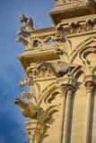 巴黎面貌古怪的人Notre Dame大教堂  库存图片