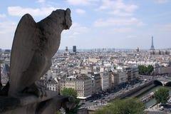 面貌古怪的人Notre巴黎Damme  库存图片