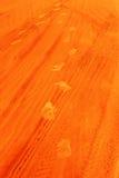 鞋子印刷品和刹车痕在红色澳大利亚沙漠 库存照片