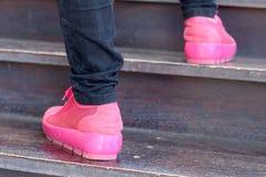 鞋子在棕色背景变粉红色在公园 图库摄影