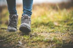 鞋子在森林里 库存照片