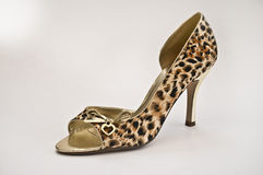 鞋子妇女 免版税库存照片