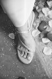 鞋子婚礼 免版税图库摄影
