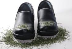 鞋子工作 库存图片