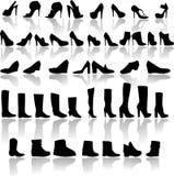 鞋子的类型 皇族释放例证