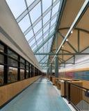 韦恩堡艾伦县公立图书馆  免版税库存图片
