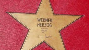 韦纳・荷索,名望步行星大道der星的在柏林 股票录像