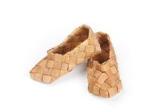 韧皮查出的鞋子 库存图片