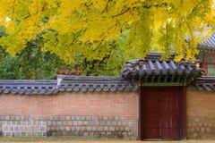 韩国传统门和墙壁 免版税库存照片