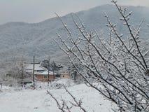 韩国冬天 库存照片