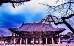 韩国宫殿在冬天 库存照片